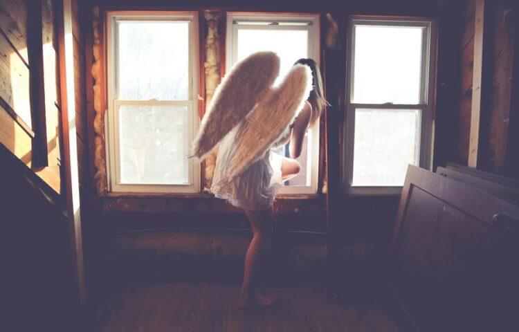 ¿Te diste cuenta de cómo perdiste tus alas?